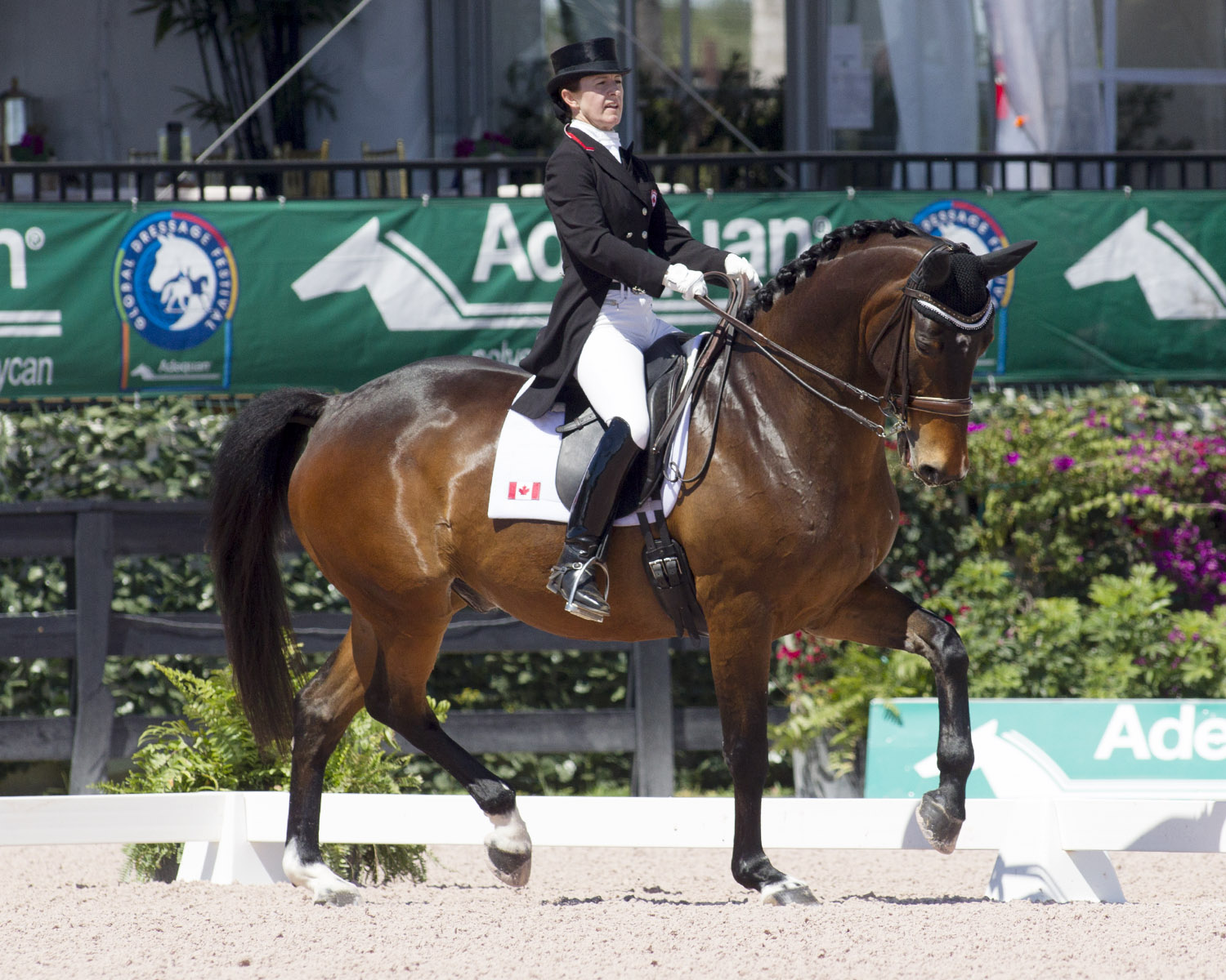 EC Exclusives - Anton Retirement - Belinda & Anton AGDF Action by Cealy Tetley.jpg