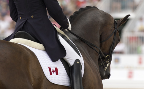 Welcome to Equestrian Canada -- equestrian.ca